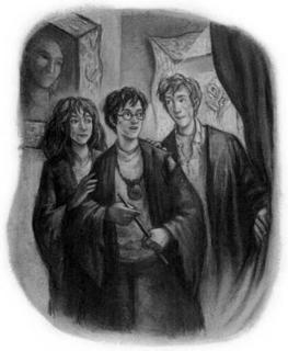chapter art, harry potter, ran weasley, hermione granger, 12 grimwauld place
