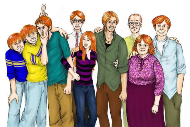 the weasley's, ron, fred, george, ginny, percy, charlie, bill, molly, arthur, harry potter, family, fan art